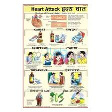 Heart Attack Chart Heart Attack Chart India Heart Attack Chart Manufacturer