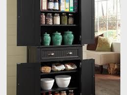 Kitchen Food Storage Cabinets Food Storage Pantry Tags Extraordinary Kitchen Storage Cabinets