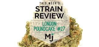 Strain Review London Poundcake 27 Marijuana