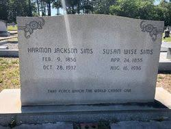 Susan Rebecca Wise Sims (1855-1936) - Find A Grave Memorial