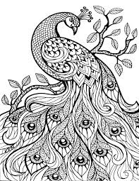 Small Picture Exclusive Design Printable Adult Coloring Pages 9 Free 224