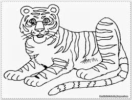 Small Picture Awesome Coloring Pages Tigers Lions Images Printable Coloring