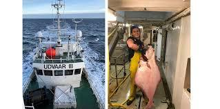 Fisker Benjamin Bakke (24) er sett av over 40 millioner på TikTok ...