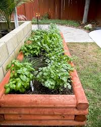 Small Picture Herb Garden Planter Box Design With Vegetable And Herb Garden