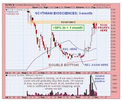 Aphqf Stock Price Chart Now Try Telling Me That Charts Dont Work Kitco News