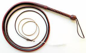 Bullwhip, Stockwhip, Snakewhip, Northern Whip Co