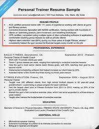 Resume Profile Examples Writing Guide Resume Companion