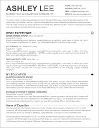 Resume Templates For Word On Mac Resume Resume Examples