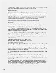 Resume Writers Service Format Resume New Template For Functional