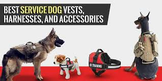 Service Dog Vest Size Chart 8 Best Service Dog Vests In 2019 Review By A Us Marine