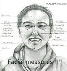 face anatomy surface anatomy face classwork pinterest anatomy face