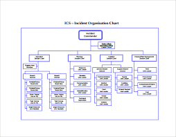 Blank Ics Org Chart Sample Ics Organizational Chart 8 Documents In Pdf