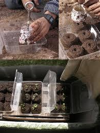 cheap garden ideas. Cheap DIY Seed Starter Soil Blocks Garden Ideas