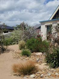 Small Picture 527 best Gardening in Australia images on Pinterest Native