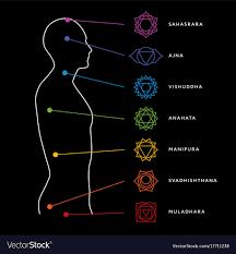 Chakra System Chart Chakra System Of Human Body
