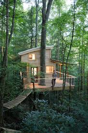 Go Out On A Limb Costa Ricau0027s Best Tree HousesThe Canopy Treehouses