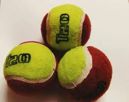 Cosco Light Weight Cricket Ball Buy Xx Xonex Red Yellow Cricket Tennis Ball Set Of 3