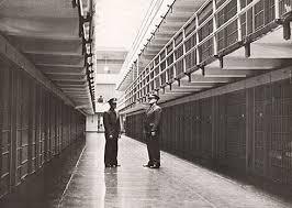 Картинки по запросу Alcatraz hakkında