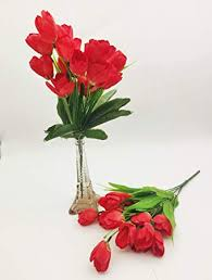 Buy Satyam Kraft 10 String line Red <b>Color</b> Tulip <b>Artificial Flower</b> ...