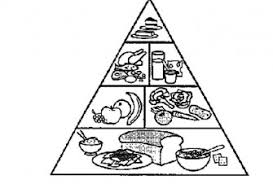 Food Pyramid Free Coloring Pages On Art Coloring Pages