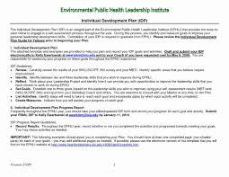 Excellent Personal Leadership Development Plan Example Ez72