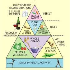 best nutrition infographics images health vegetarian food pyramid