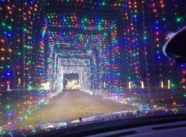 Hollywild Animal Preserve Has Best Christmas Safari In South