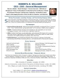 Ceo Resume Examples Adorable 48 Ceo Resume Sample Riez Sample Resumes Riez Sample Resumes