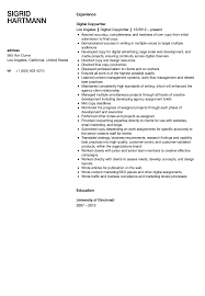 Copywriter Resume Digital Copywriter Resume Sample Velvet Jobs 1