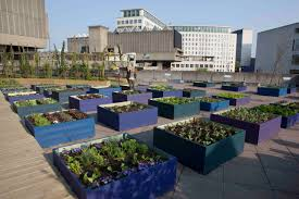 Rooftop Kitchen Garden Roof Top Garden Archives Home Caprice Your Place For Home