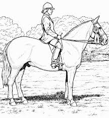 Small Picture Realistic Horse Coloring Pages Horse Coloring Pages For Free
