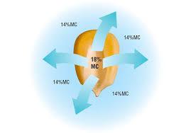 Grain Moisture Equilibrium Chart Safe Storage Opi Systems