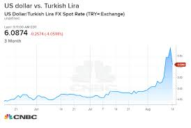 Charts Of Past Currency Crises Show Turkey May Face A Lot