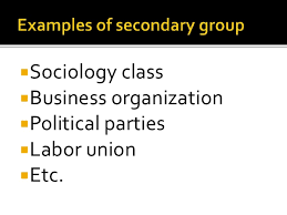 Secondary Group The Secondary Groups Article1000 Com