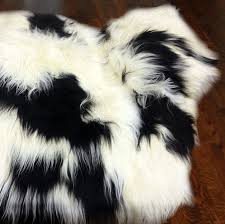 icelandic sheepskin rug spotted black and white