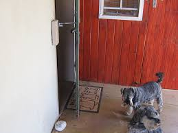 Cat flap or Dog Door Alternative | LockLatch