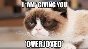 Grumpy Cat is overjoyed | Flickr - Photo Sharing! via Relatably.com