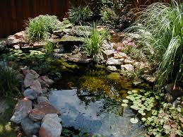 Garden Garden Pond Landscape Ideas There Is A Fish Pond And There Are  Aquatic Plants In The Pond. Garden Pond Fish Pond Landscape Ideas Decorated  With Some ...