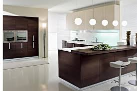 Modern Kitchen Units contemporary kitchen cabinets  kitchen ideas
