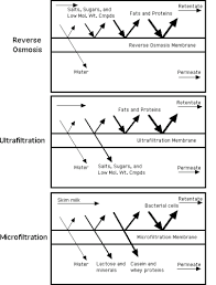 Whey Processing Flow Chart Membrane Processing