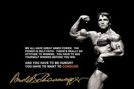 Arnold Schwarzenegger Quotes Magnificent Living Room Bedroom Home Wall Decoration Fabric Poster Arnold