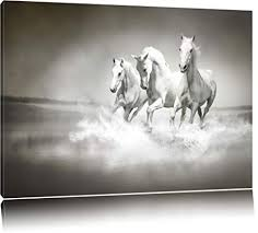 white horses running in water. Simple Water White Horses Running In The Water Canvas XXL Huge Pictures Completely  Framed With Stretcher Inside Horses Running In Water A