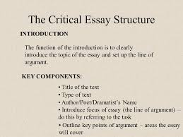 int critical essays purpose of the critical essay a discursive the critical essay structure introduction the function of the introduction is to clearly introduce the topic