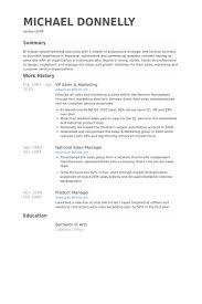 Stunning Design Vp Of Sales Resume Vp Sales Sample Resume Executive