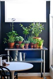 indoor kitchen garden. 7. Rolling Herbs Indoor Kitchen Garden Homedit