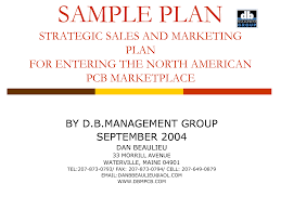 Sample Sales Plan Template Zrom Tk Strategic Alliance Business