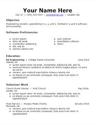 Professional Summary For Resume No Work Experience Objective Volunteer Skills Based Resume Template