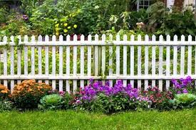 small vegetable garden fence ideas colour picket beautiful decorating scenic an aged white that separates the g