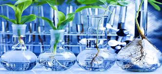 professional biology assignment help for students