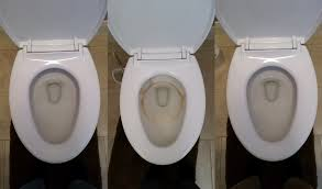 vs american standard toilets